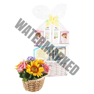 Buy Baby Hamper Singapore