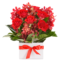 flower delivery cheap grand opening flower basket