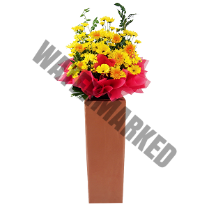 yellow opening flower stand