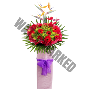 order premium standing bouquet for grand opening singapore