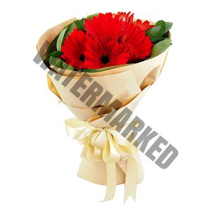 red gerbera best Hand Bouquet Singapore