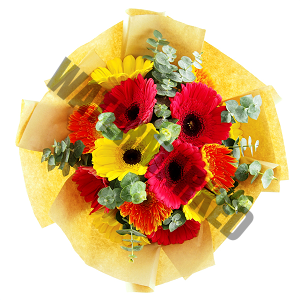 online yellow pink gerbera Hand Bouquet Singapore