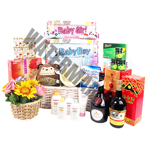 Baby Hamper Singapore Discount