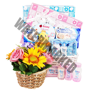 Baby Hamper Gifts Singapore