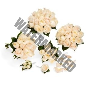 Cheap champagne roses Bridal Bouquet package