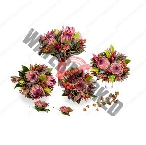 Send protea wild flower Bridal Bouquet package Singapore