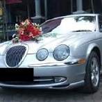 wedding flowers Bridal and Wedding Car Decoration