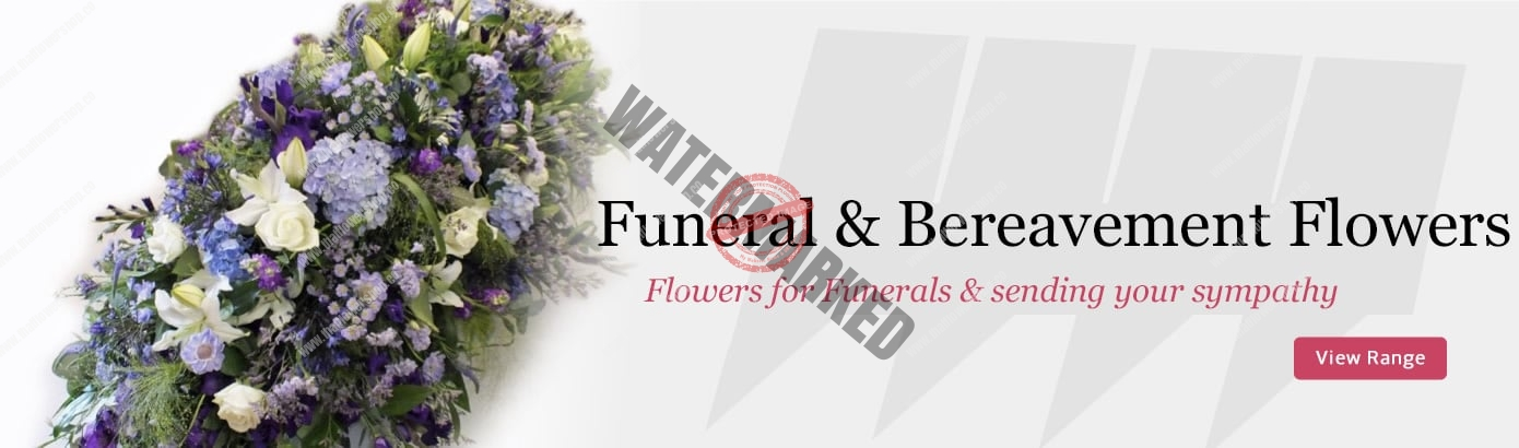Shop funeral Flowers