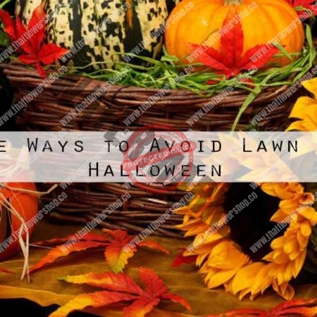 4 Creative Ways to Avoid Lawn Damage on Halloween