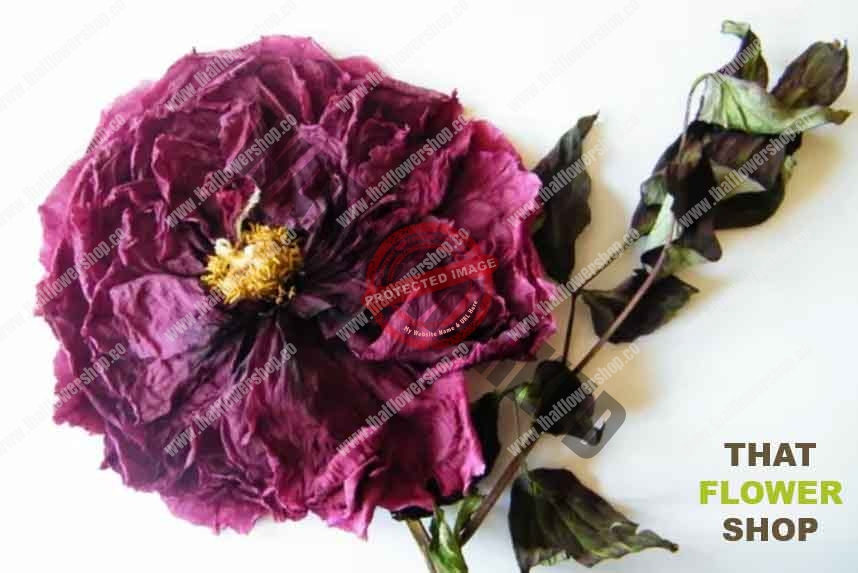 How To Dry Flowers: 7 Awesome Ways To Preserve a Bouquet
