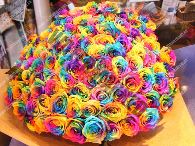stunning 99 rainbow rose bouquet in Singapore