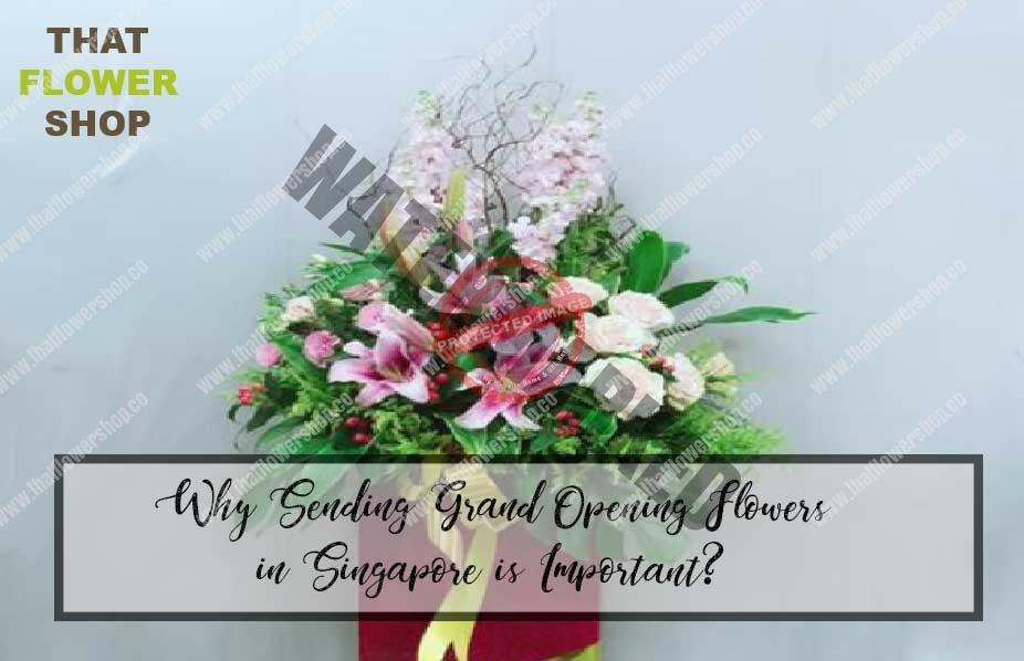 Why Sending Grand Opening Flowers in Singapore is Important?