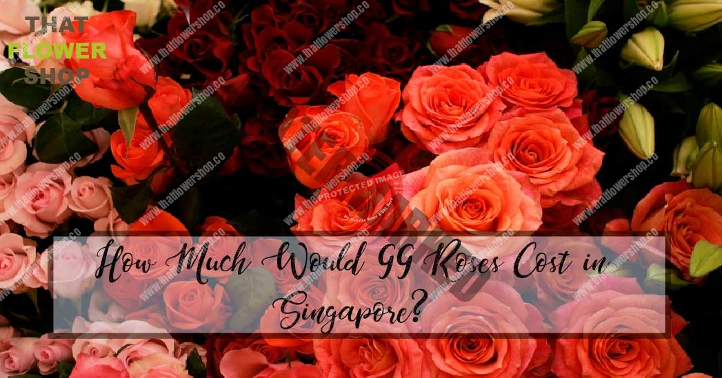 How Much Would 99 Roses Cost in Singapore?