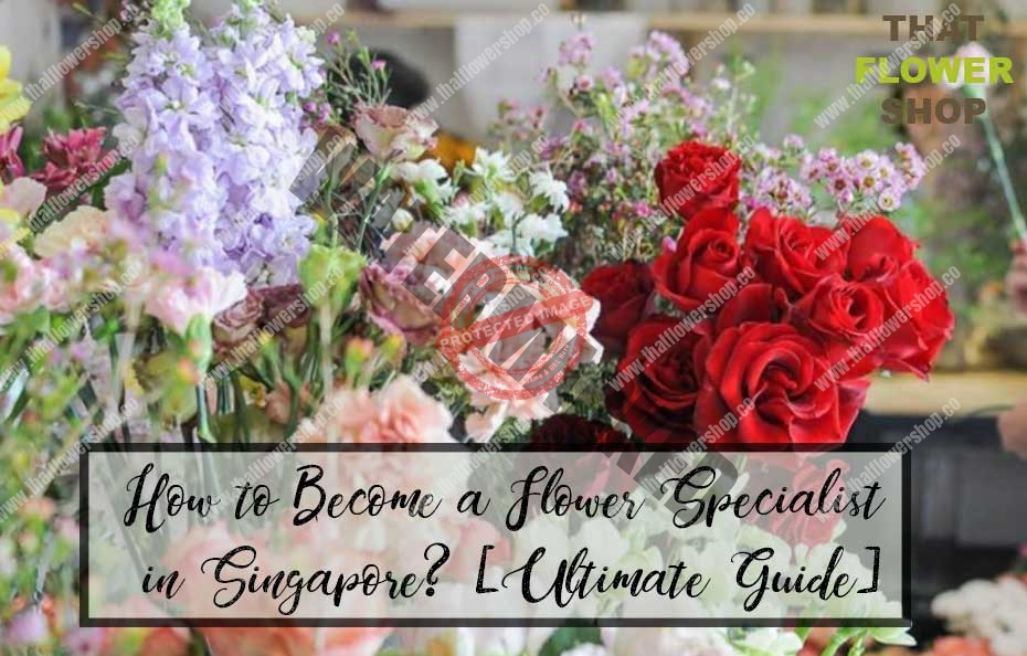 How to Become a Flower Specialist in Singapore? [Ultimate Guide]