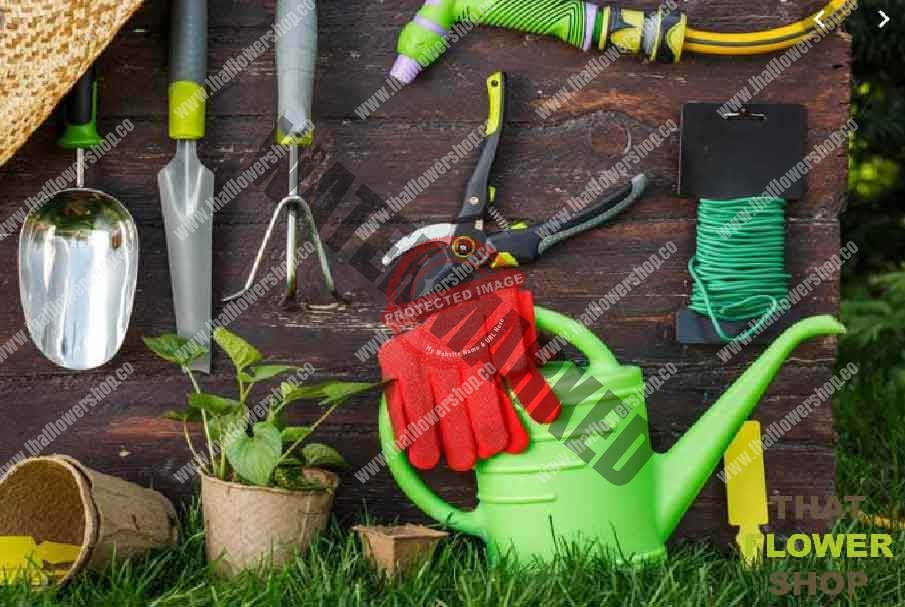 10 Tools Every New Gardener Need
