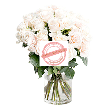 shop 24 stalk red roses in vase
