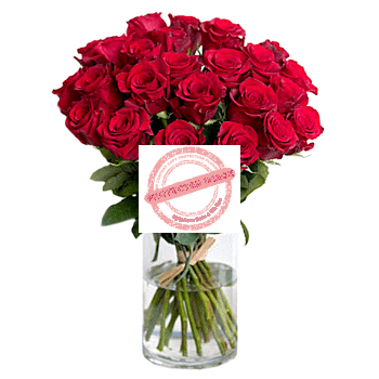 24 red red roses in vase
