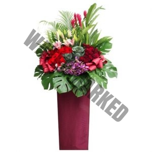 CS-18 EXCITING CONGRATULATORY FLOWER STAND