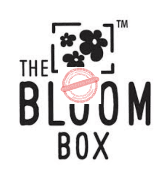 The Bloom Box Review