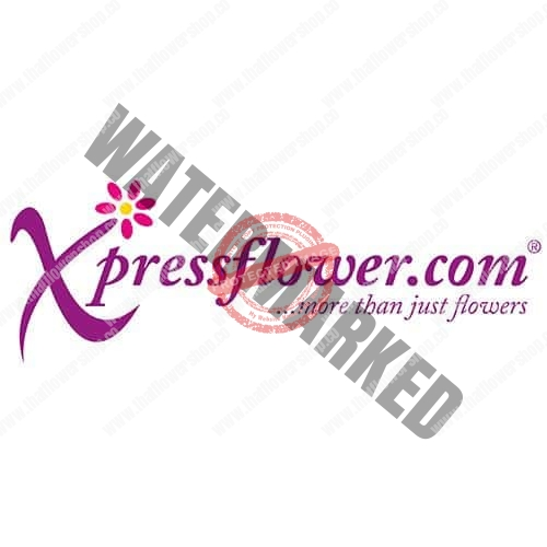 Xpressflower.com Florist Review